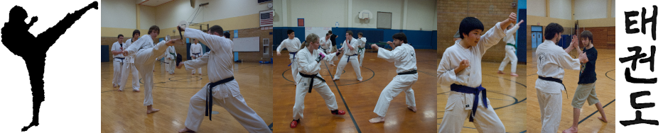 Fulcrum Tae Kwon Do